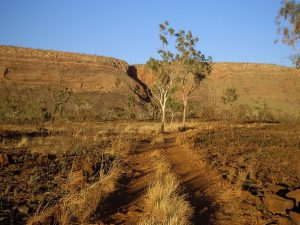 Australien Kimberley
