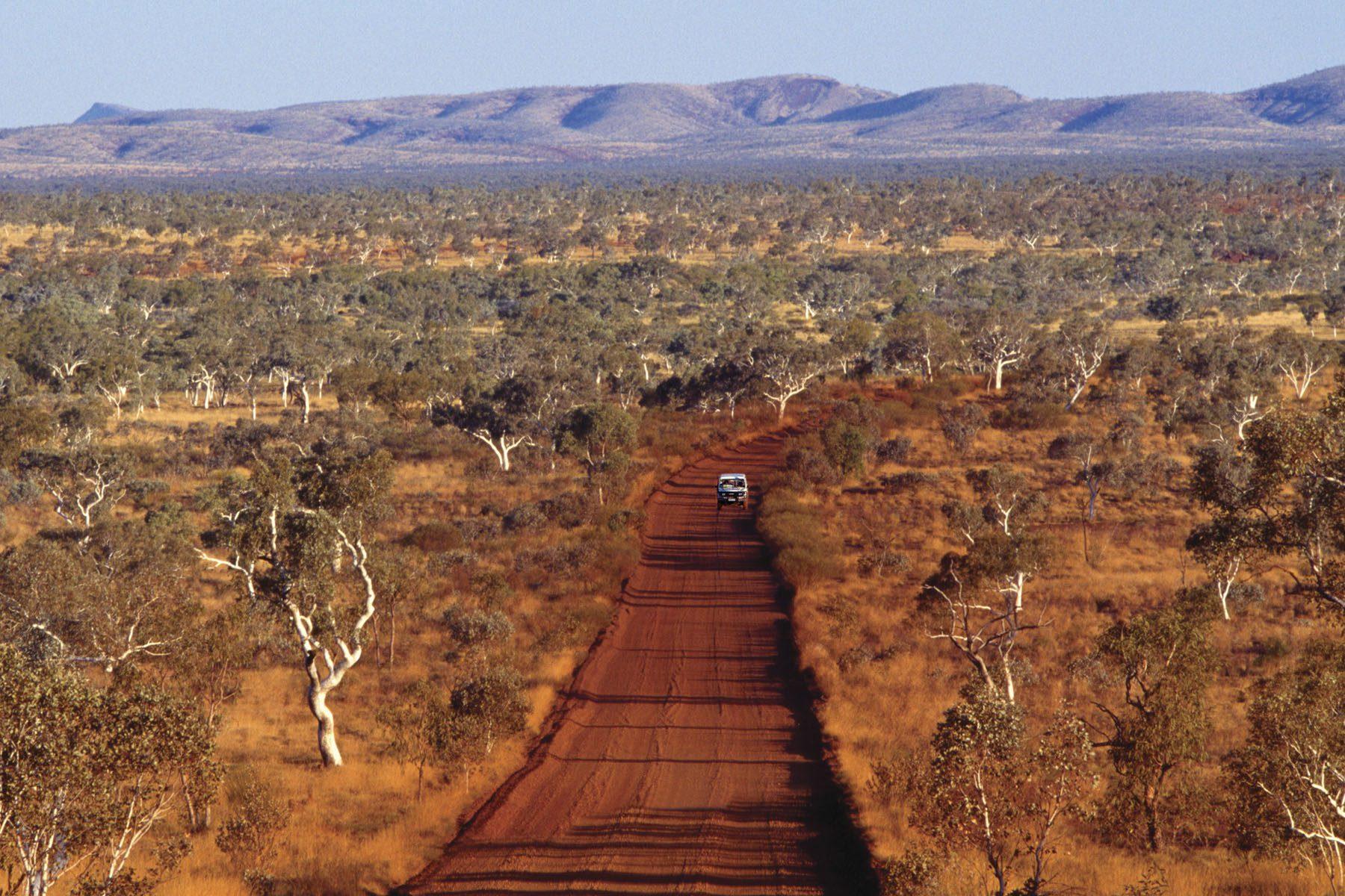 Australiens Tiere – Land der Gifttiere | Australien-Information.com